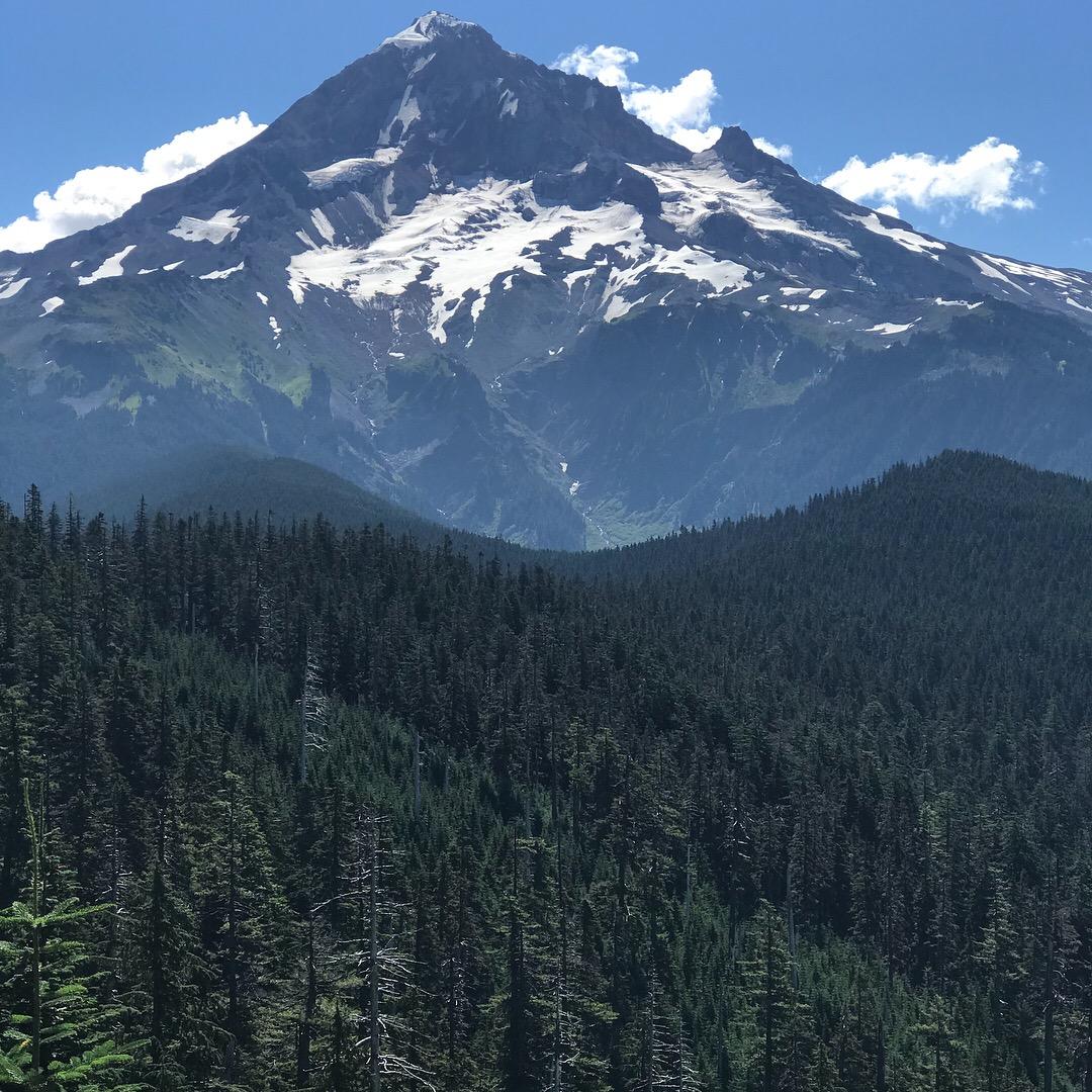 Mt. Hood Oregon Paradise Loop Hike